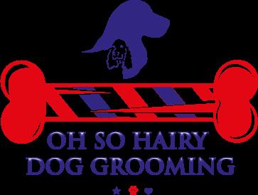 Oh So Hairy Dog Grooming